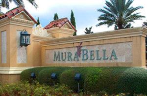 Murbella