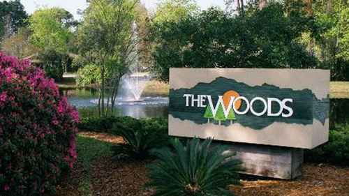 The Woods Homes For Sale in Jacksonville, Florida
